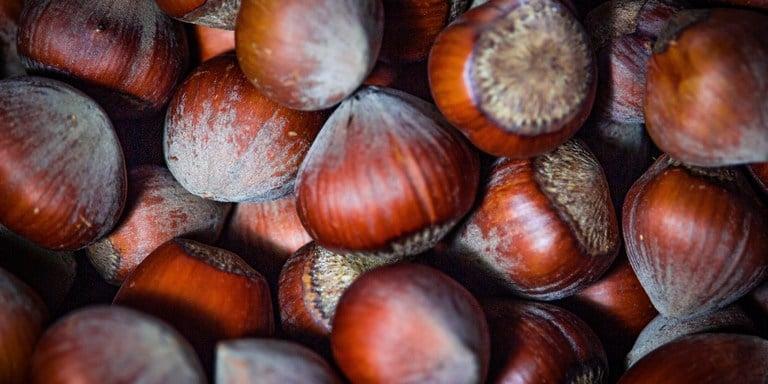 hazelnoten hebben gezonde voedingswaarden